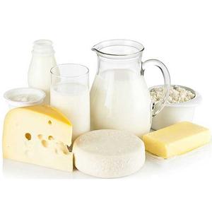 mini-modulo-elaboracao-produtos-lacteos